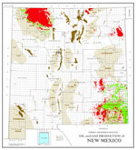 State Oil and Gas: New Mexico-11